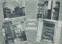"ACIREALE /  Collegio  "" A. PENNISI "" _ Liceo Ginnasio _Vedutine  _ Viaggiata - Acireale"