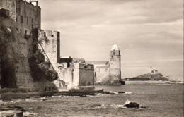 D66  COLLIOURE  Les Templiers, Le Clocher Et La Chapelle St-Vincent ..... ( Ref CC1013 ) - Collioure