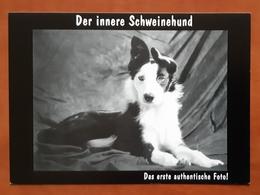 Schweinehund Carte Postale - Advertising