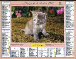 Almanach De La Poste 1995 -  Paris, Val-de-Marne - Calendriers