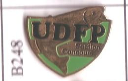 B248 Pin's Pêche Poisson UDFP Union Dijonnaise Des Fervents Pécheurs Dijon Cote D'Or Achat Immédiat - Animaux