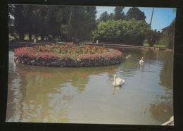 Coex (85) : Le Jardin Public - Autres Communes