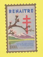 Timbre Vignette érinnophilie Antituberculeux Grand Format Timbre Auto-vitrine 1000 Frs Renaïtre Format Hauteur 14,4 X 9, - Commemorative Labels