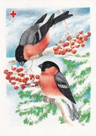 Postal Stationery - Birds - Bullfinches In Winter Landscape On Rowan - Red Cross 1992 - Suomi Finland - Postage Paid - Finland