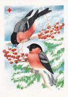 Postal Stationery - Birds - Bullfinches In Winter Landscape On Rowan - Red Cross 1992 - Suomi Finland - Postage Paid - Postwaardestukken