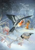 Brownie - Gnome - Elf Walking With Cat - Birds - Bullfinches - Raimo Partanen - Christmas