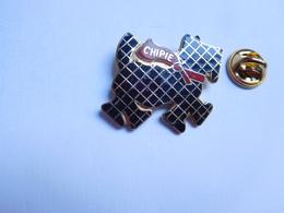 Superbe Pin's En EGF , Marque Chipie , Mode , Vêtement , Chien Scottish Terrier - Marques