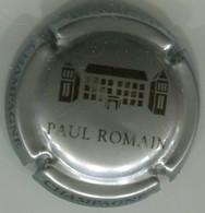 CAPSULE-CHAMPAGNE ROMAIN Paul N°15c Gris Argenté & Noir - Champagne