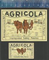 AGRICOLA PAARDEN PLOEGEN PLOEG HORSE PLOUGH CHARRUE CHEVAUX PFLUG PFERDE AGRICULTURE FARMER OLD BELGIAN Matchbox Labels - Boites D'allumettes - Etiquettes