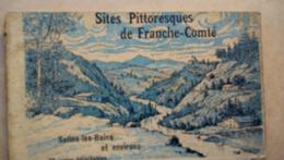 Carnet De 20 Cartes Postales De Salins Les Bains - Altri Comuni