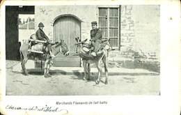 CPA - Belgique - Marchands Flamands De Lait Battu - Belgique
