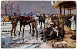 CPA Militaria - En Guerre - Z.3. Soins Aux Chevaux Blessés à La Guerre - L.V.C - Guerra 1914-18