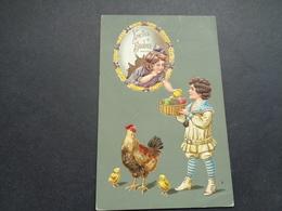 Enfants ( 4323 ) Enfant   Kinderen   Kind   -  Carte Gaufrée   Reliëf   Hen  Coq  Haan  Poule - Enfants