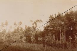 1894 Belle Photo De Sept Fontaines Les Bois Rhose Saint Genese 16x11cm - Fotos