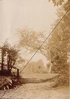 1894 Belle Photo Verger à Sept Fontaines Rhode Sant Genese 16,5x12cm - Fotos