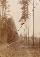 1894 Belle Photo Uccle Bois De Verrewinkel 16,5x12cm - Fotos