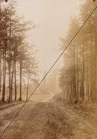 1894 Belle Photo Uccle Bois De Verrewinkel 17x12cm - Fotos
