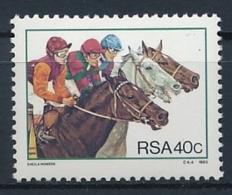 Südafrika - Pferde - Chevaux - Horses - Cavalli - Einwandfrei Postfrisch/** - MNH - Caballos