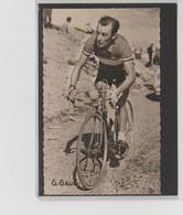 PHOTO   8,8 Cm   X   14  Cm   MIROIR SPRINT          CHARLY GAUL - Cycling