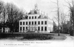 Carte 1906 CHATEAU DU MICK / BRASSCHAET POLYGONE - Brasschaat