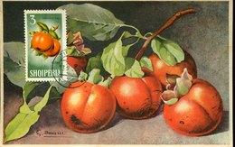 51579  Albania, Maximum 1966,  Kaki Khaki, - Fruits