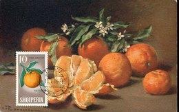 51580  Albania, Maximum 1965,  Orange, Orangen,  Arancie - Frutta