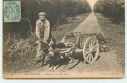 En Sologne - Ramasseur De Bois Mort - Attelage De Chiens - Francia