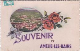 66. Souvenir D'AMELIE-LES-BAINS - Francia