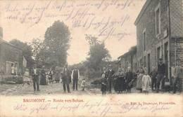 Bagimont Route Vers Bohan Vresse-sur-Semois 1916 - Dinant