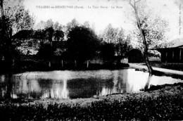 VILLIERS EN DESOEUVRE ,LA TOUR NOIRE ,LA MARE  REF 62899 - Francia