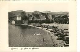 CPM  Neuve Collioure  Le Port Et Le Château - Collioure