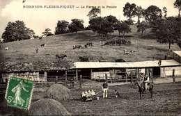 Robinson-Plessis-Piquet ( Hauts-de-Seine ). - La Ferme Et La Prairie.   / LOT 3079 - Autres Communes