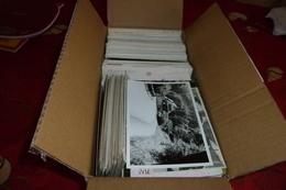 CARTON (2.995 Kg) DE PLUSIEURS CENTAINES DE CARTES FANTAISIE, ART, PUB, ANIMAUX, HUMOUR, ILLUSTRATIONS, ETC ...... - 500 Cartoline Min.