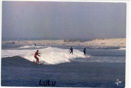 DEPT 29 : édit. Jos Le Doaré N° 9 7002 : Surf Sur Les Rouleaux A La Pointe De La Torche - France