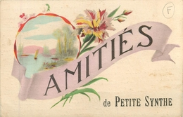 CPA Petite Synthe P-87 - France