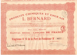 Titre Ancien - Produits Chimiques  Et Engrais L. Bernard - Sté Anonyme  - Titre De 1920 - Industrie