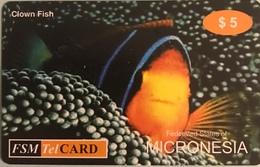 """MICRONESIE  -  Prepaid  -  """" FSMTelCARD  """"  -   $5.00 - Micronésie"""