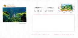 Enveloppe Illustrée Pré-timbrée, La Réunion 974, Nos Trésors, Takamaka - Affrancature Meccaniche Rosse (EMA)
