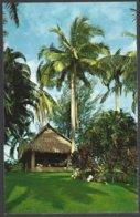 CP  FF-480- A Beautiful Corner For Repose,under A Tropical Sky, In Panama . Unused - Panama