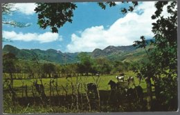CP FF-678- Beautiful And Interesting Scenery Is Found Everywhere In The Interior Of The Republic Of Panama . Unused - Panama