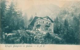 2a.704. Rifugio Bolognini In Bedole - Trento - Italia