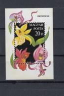 Ungarn Michel Cat.No. Sheet    Mnh/**   192 - Blocs-feuillets