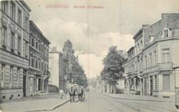 Belgique - Salzinnes - Avenue D'Omalius - Autres