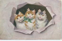 Chat - Cat - Kat - Katze - Sperlich W.S.S.B. 6979 - 1928 - Chats