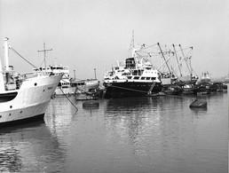 Photo Inde Calcutta  Coin Du Port  Ph. Vivant Univers - Lugares