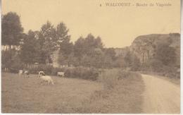Walcourt - Route De Vogenée - 8 - Walcourt