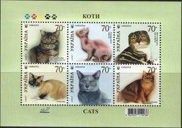 Ukraine, 2007, Mi. 871-76 (bl. 61), Y&T 796-801, Sc. 687, SG 771-76, Cats, MNH - Ukraine