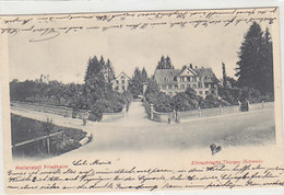 Zihlschlacht - Heilanstalt - 1905        (P-221-90505) - TG Thurgovie