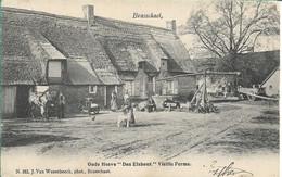 Brasschaat Oude Hoeve Den Elshout  Hoelen 182 - Brasschaat