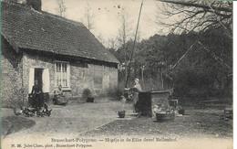 Brasschaat Hoeve In De Eike Dreef Hoelen 26 - Brasschaat